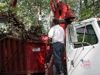 Waste Management Debris Removal