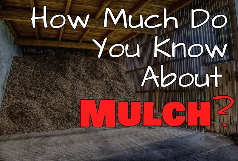 Photo Link to Safety Tips on Mulch Fires